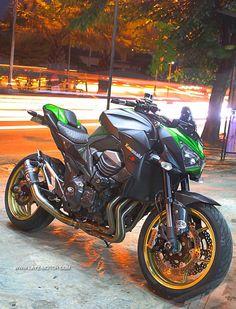 Gallery Photo | Layz Motor