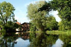 #gdansk #ilovegdn #oliwa #gdanskikalendarz #gdanskcalendar  fot. Marta Schuchardt / Czerwiec