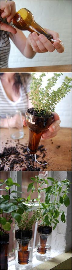 Container Gardening For Beginners 18 Indoor Herb Garden Ideas---DIY Bottle Garden - These cool Indoor Herb Garden Ideas will show you how to make little indoor herbs garden by yourself in your home. They can give you wonderful smells. Backyard Garden Landscape, Small Backyard Gardens, Diy Garden, Garden Landscaping, Small Patio, Garden Trellis, Garden Path, Spring Garden, Bottle Garden