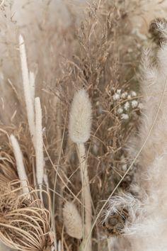 By SIDDE - ELLE INTERIEUR Shades Of White, Dandelion, Wallpaper, Green, Plants, Inspiration, House Interiors, Reno Ideas, Beach House