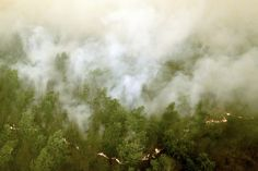 Indonesia's huge fires might be the worst climate change crisis on Earth right now