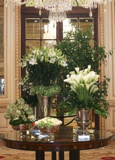 This modern and stylish design composed of fresh roses, green hydrangeas, beautiful cala lilies, lush star lilies and exotic Anthuriums enchant guests as they walk into the main lobby at The Plaza Hotel.