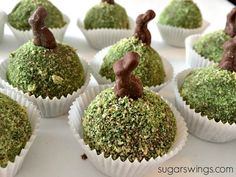 spring cake bites with edible moss and mini bunny Frühlingskuchenbissen mit essbarem Moos und Easter Cupcakes, Easter Cookies, Easter Treats, Flower Cupcakes, Christmas Cupcakes, 13 Desserts, Desserts Ostern, Easter Desserts, Spring Recipes