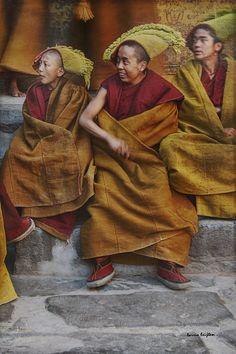 Yellow hat monks . Tibet