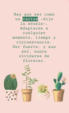 Frases /citas how to draw a rose - Drawing Tips Inspirational Phrases, Motivational Phrases, Words Quotes, Wise Words, Sayings, Cactus Quotes, Best Quotes, Love Quotes, Daily Quotes
