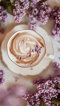 Lavender Aesthetic, Flower Aesthetic, Purple Aesthetic, Coffee Is Life, I Love Coffee, Sparkling Stars, Good Morning Coffee, Coffee Pictures, Flower Tea