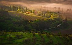 Somewhere in Tuscany by Przemyslaw Chola