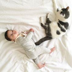 WEBSTA @chicoshigeta Happy 6 months old my 🍒🎉🎉🌈! キミたちが生まれてから、もう6ヶ月も経ったなんて! よくぞここまで育ったぞ!でかした娘たち! 昨日撮った写真と生後1ヶ月半の写真と比べてみました。ベティのサイズはもちろん同じなので、サイズ感がお分かりいただけるでしょうか?もうねーちゃんよりずいぶん重いしね。これからもスクスク育ってね。