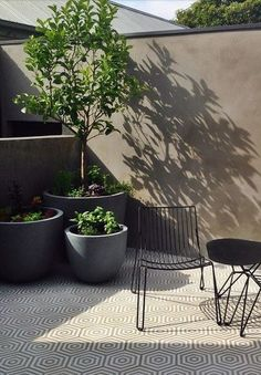 tiled outdoor space with green plants ♡