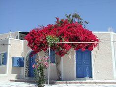 free photo -> Greece ->Greek house -> download area -> photo size
