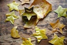 okul öncesi çocuklar için sonbahar aktiviteleri (5)