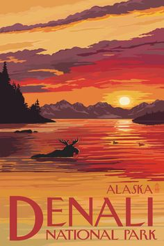 Denali National Park, Alaska - Moose at Sunset - Lantern Press Poster