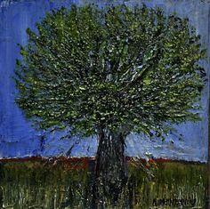Small Olive Tree 5