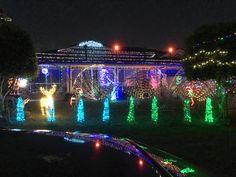 Christmas in Logan City 2016 Logan City, Concert, Christmas, Image, Xmas, Recital, Weihnachten, Navidad, Yule