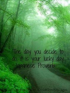 181 Beste Afbeeldingen Van Good Luck Nature Colors En Dandelions