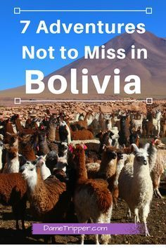 7 Adventures Not to Miss in Bolivia  #travel #travelling #destinations #travelblogger #travelstories #travelinspiration #besttravel #tourism #travelwriter #travelblog #traveldeeper #traveltheworld #BoliviaTravel   http://adventuresoflilnicki.com/