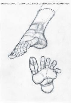 stefano-lanza-pie-scrie.jpg (759×1100)