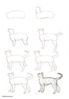 Aprender a dibujar-Body-People-Perspective-Animals-Popcorn-with-Bacon, . - Aprender a dibujar-Body-People-Perspective-Animals-Popcorn-with-Bacon, # palomitas de maíz - Draw Cats, Cat Drawing Tutorial, Drawing Techniques, Animal Drawings, Drawing Animals, Learn To Draw, Art Tutorials, Drawing Tutorials, Easy Drawings