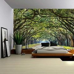 Wall26® - Long Pathway in an Arch Tree Covered Forest - Wall Mural, Removable Sticker, Home Decor - 100x144 inches