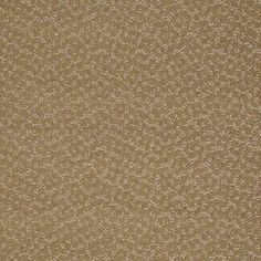 Color: 00703 Navajo CCS20 Capellini - Shaw Caress Carpet Georgia Carpet Industries