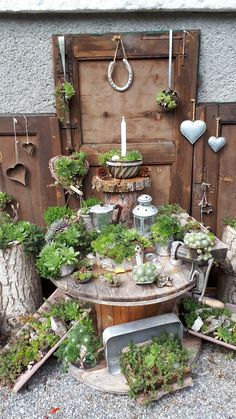 Succulents In Containers, Planting Succulents, Rustic Gardens, Outdoor Gardens, Garden Nook, Decoration Plante, Succulent Gardening, Diy Garden Decor, Garden Projects