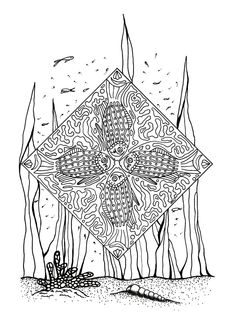 Plentiful Cornucopia Coloring Page Coloring Books And Pages