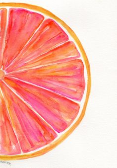 Grapefruit Watercolor Painting Original, Ruby Red Citrus ART, 7 x 10, kitchen…