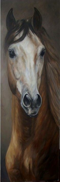 Modern Oil Painting: Paintings of horses – Maureen Hassen – Join the world of pin Painted Horses, Pretty Horses, Beautiful Horses, Horse Drawings, Art Drawings, Art Occidental, Horse Artwork, Horse Portrait, Equine Art
