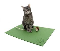 Feline Yogi Cat Mat with Catnip Cat Toy Cat Scratching Post Bed Activity Play Mat Green >>> For more information, visit image link.