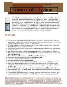 Young Living Essential Oils Ledum www.youngliving.org/ambermoore