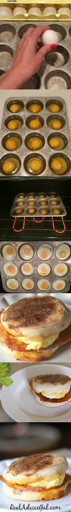 Make quick healthy breakfast for a crowd by cooking eggs in a muffin tin. Eggs are cooked to perfection and great for Egg McMuffins.