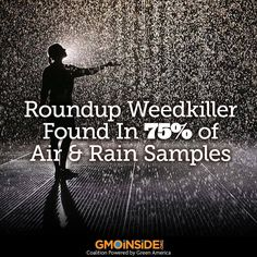 ,The GM farming system has made exposure to Roundup herbicide a daily fact of our existence, and according to the latest US Geological Survey study its probably in the air you are breathing... http://www.greenmedinfo.com/blog/roundup-weedkiller-found-75-air-and-rain-samples-gov-study-finds
