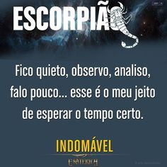 #escorpiao #escorpião #frases #frase #astrologia #zodíaco #signos #signo #pensamentos #pensamento… All Zodiac Signs, Zodiac Sign Facts, Horoscope Signs, Scorpio Quotes, Pisces, Spiritual Path, Life, Tattoo, Instagram