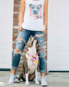 Custom pet vests with pitbull
