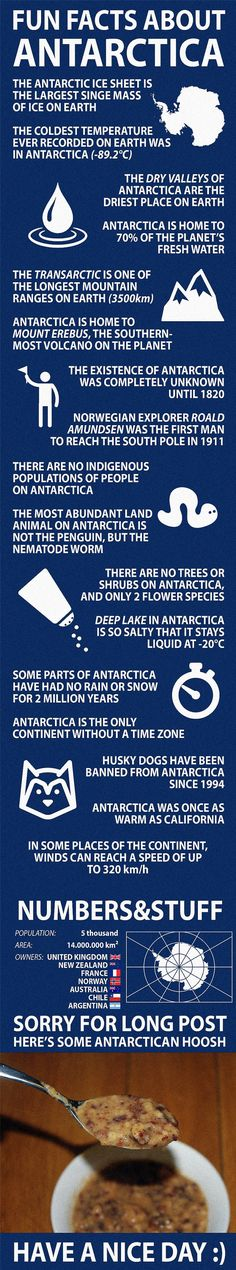 Fun Facts about Antarctica . Browse new photos about Fun Facts about Antarctica . Most Awesome Funny Photos Everyday! Because it's fun! The More You Know, Good To Know, Did You Know, We Are The World, Countries Of The World, Funny Facts, Weird Facts, Facts About School, Trivia