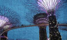 Singapura – Cidade 8 de 50 Ou A menina mimada da Ásia | O nome disso é mundo