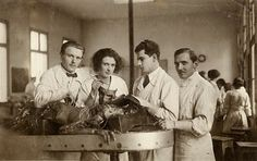 The Burns Archive: A Student's Dream: Dissection Photography