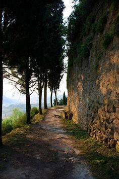 Morning walk in San Gimignano