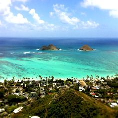 we took a hike up to the old war Pillboxes - Oahu the view was unbelievable!