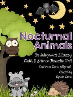 Nocturnal Animals {An Integrated Literacy, Math & Science Unit} from Chalk One Up for the Teacher