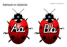 Alphabet on ladybirds - uppercase with lowercase - cursive Great pic! Have a look at this Cursive Handwriting post. http://www.tpt-fonts4teachers.blogspot.com/2013/02/cursive-style-fonts-family.html