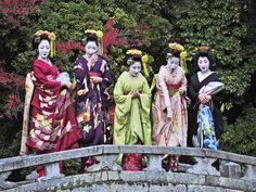 Maiko Mamefuji, Mamekiku, Yukiha, Ichiharu and geiko Sayaka at a bridge of Chion-in Temple (SOURCE)