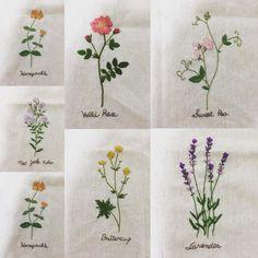 #아오키카즈코도안 #자수타그램 #앨리스다락방 #10월카페시실리 #소소한일상의작은즐거움 #꽃자수 #야생화자수 #프랑스자수 #손자수 #들꽃자수 #embroidery #handmade