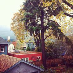 View from the treehouse studio I call Home by dartphoto http://instagr.am/p/SQuVpzK48U/