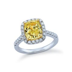 Classic shared prong style halo engagment ring