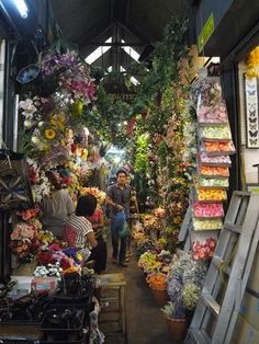 (Chatuchak, Bangkok) Places To Travel, Travel Destinations, Places To Go, Chatuchak Market, Flower Market, Bangkok Thailand, Places Ive Been, Ipad, Around The Worlds