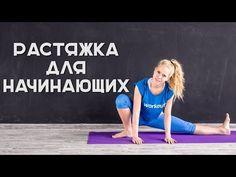 Растяжка для начинающих [Workout | Будь в форме] - YouTube