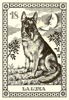 vintage moon tarot cards | Dog Tarot Cards Canine Fortune Telling I Cani, 4 Cards, 4 5 11 18