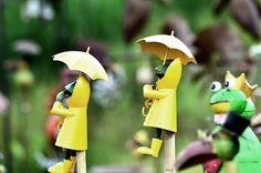 Es regnet, Foto: M. Schneider