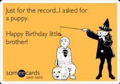 Happy Birthday Brother : Image : Description Just for the record.I asked for a puppy. Happy Birthday little brother! Happy Birthday Little Brother, Little Brother Quotes, Brother Birthday Quotes, Happy Birthday Fun, Birthday Jokes, Birthday Messages, Funny Birthday Cards, Bday Cards, Free Birthday